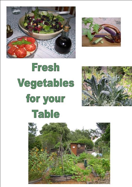 [veggies%255B5%255D.jpg]