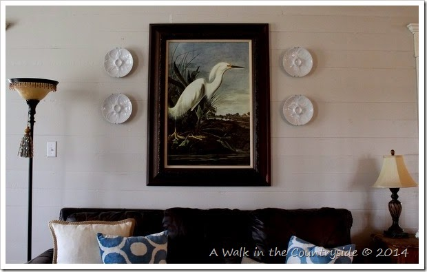 audubon print and oyster plates for the wall