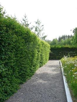 033 korr Ulf Nordfjell Umedalen Spa Daniel Grankvist