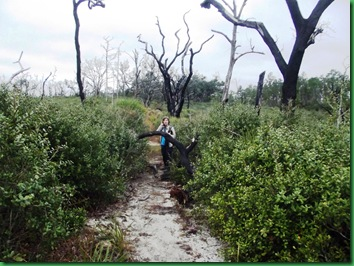 Pat's Island Trail 094