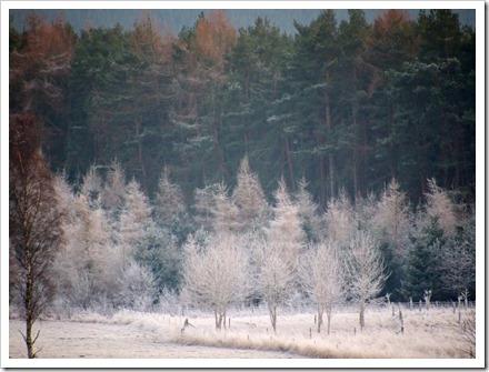 16 Jan 2 16-01-2012 16-43-38