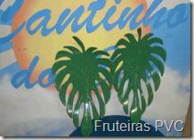 Fruteira-PVC02