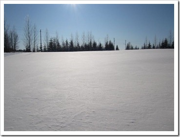 20120115_sunny-winter-day_008