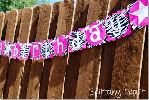 Zebra Birthday 027