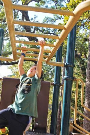 Pine Cove Fall 2013 032