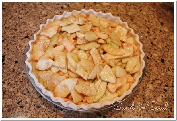 Pie crust filled with apple slices (800x533)