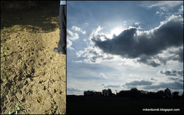 boar tracks, and pigs might fly: a cloud sanglier