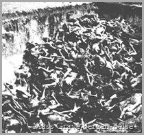Belsen.Mass.Grave