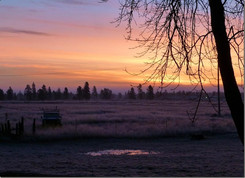 frosty 013