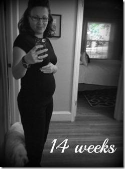 14 weeks1