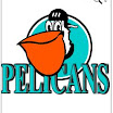 pelicans.jpg