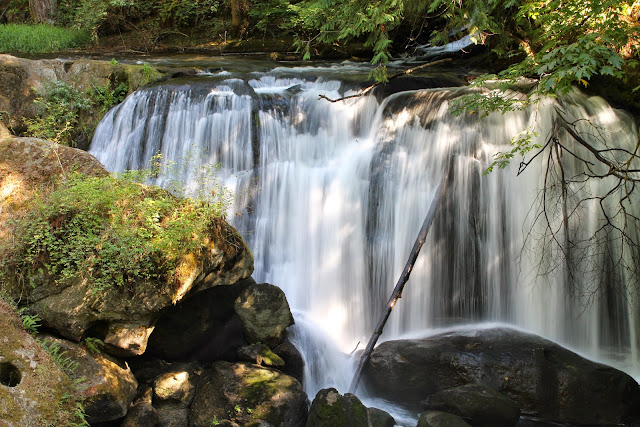 Sept/Oct 2014 - 2nd Place - Whatcom Falls / Credit: Carole Murray