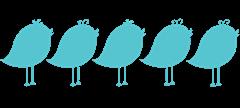 5Birds