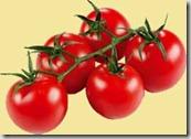 vine-ripened-tomatoes