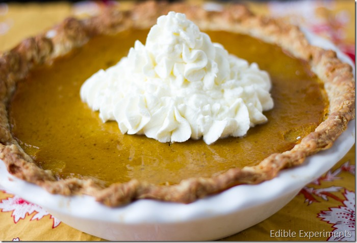 Buttercup Squash Pie (2 of 2)