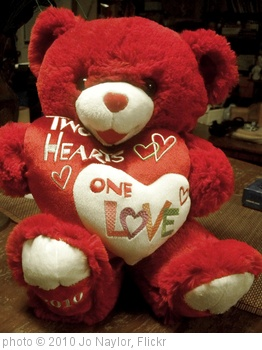 'my valentines bear' photo (c) 2010, Jo Naylor - license: http://creativecommons.org/licenses/by/2.0/