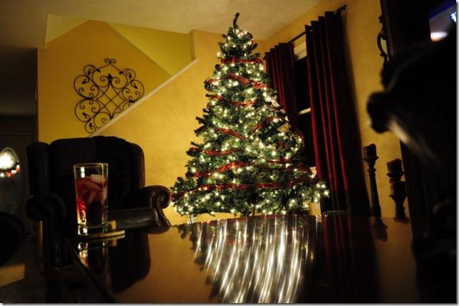 christmas lights dec 18 146