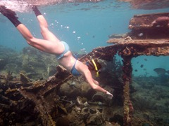 Snorkeling at a shipwreck in the Kuna Yala.