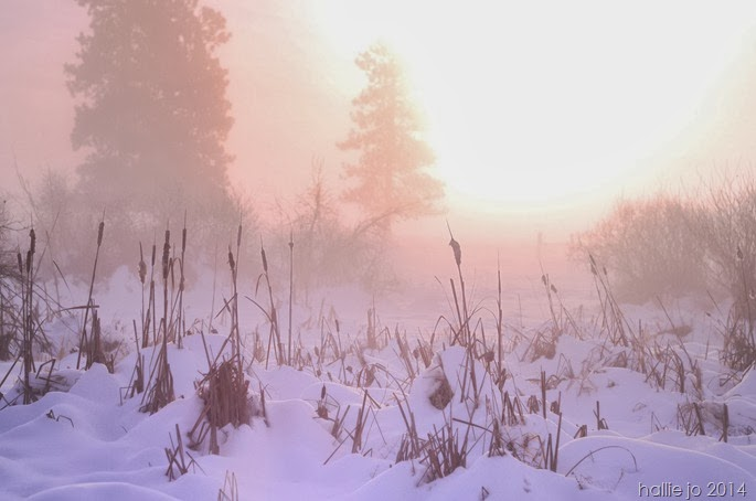 Snowfall5