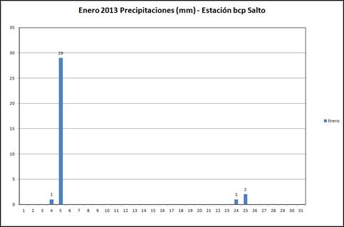 Precipitaciones (Enero 2013)