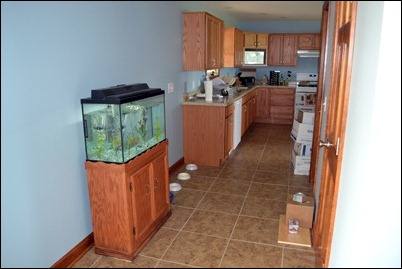 kitchen during 01