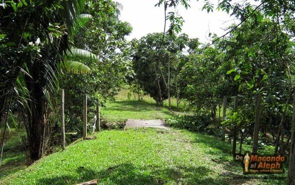 Viaje Amazonas Maloka Makuna  7