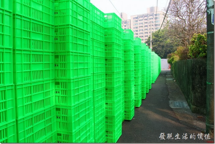 這是「321巷藝術聚落」巷底的綠色塑膠籃所搭建而成的大型裝置「林」作品,剛好與前面的「森」作品相呼應。