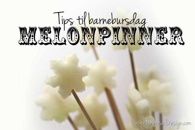 IMG_3143 2 melonpinner_barnebursdag_tips