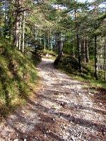 Pot na greben Zabreških peči