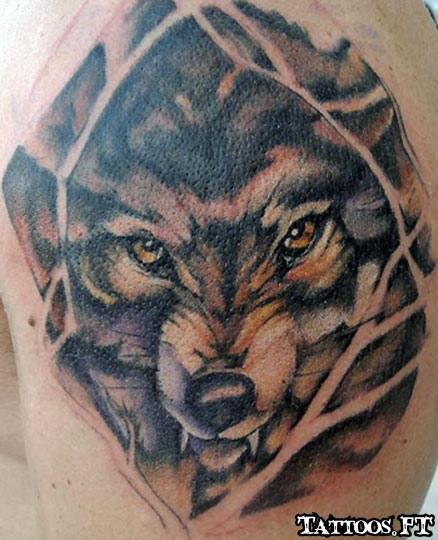 Lobos fotos tattoos tatuagens