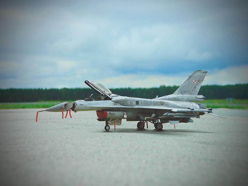 _F16.jpg