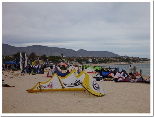 The kites of La Ventana