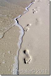 footprints in the saand