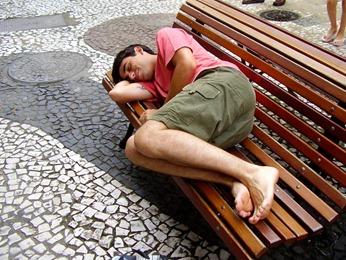 Foto jacu em Florianópolis