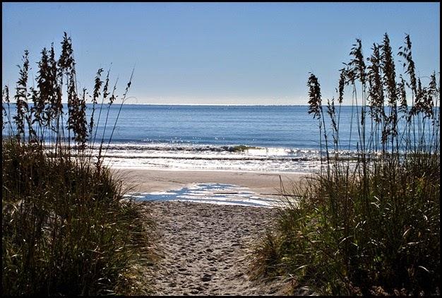 misc - The Beach