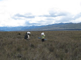 Trikora - porters crossing the floodplain (Ricky Munday, Nov 28, 2010)