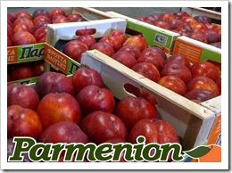 nectarin Parmenion