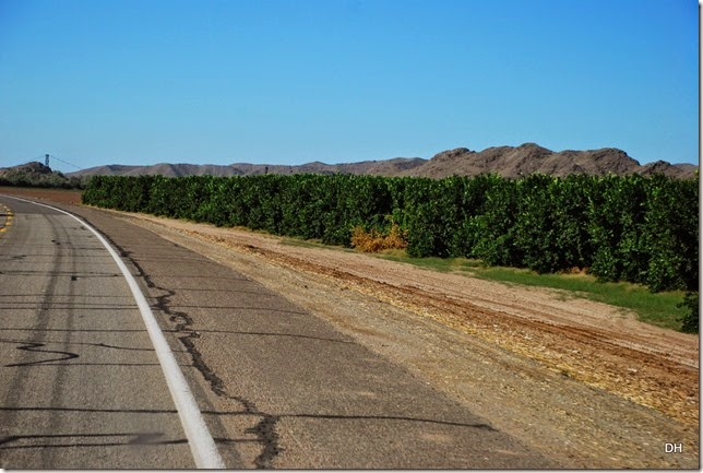 10-24-14 A Travel Parker to Yuma US95 (42)
