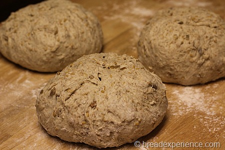 five-grain-rye-sourdough_1286