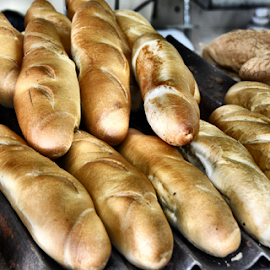Bread by Rita Uriel - Food & Drink Cooking & Baking ( bread, bake, baguette, italian bread,  )