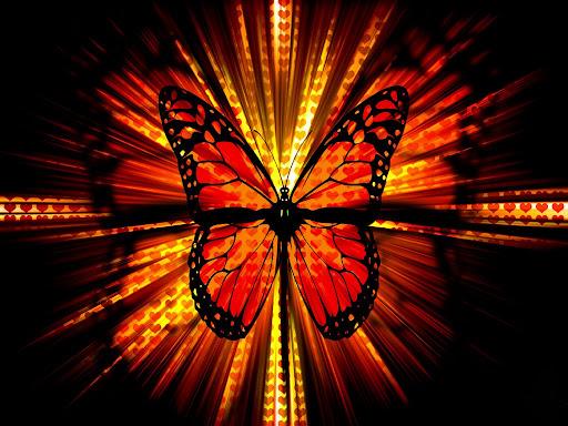 ... wallpaper jpg mariposas flores corazones 09 mariposas flores corazones