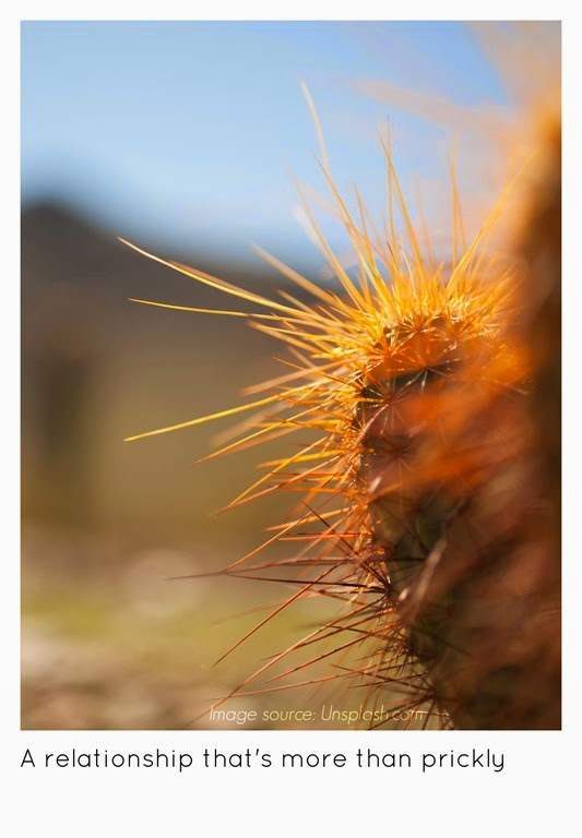 [prickly4.jpg]