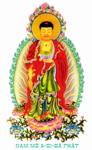 Bộ sưu tập ảnh: Đức Phật A Di Đà