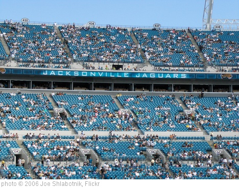 'Jacksonville Jaguars' photo (c) 2006, Joe Shlabotnik - license: http://creativecommons.org/licenses/by/2.0/