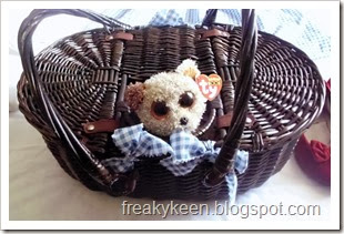 Basket with dog