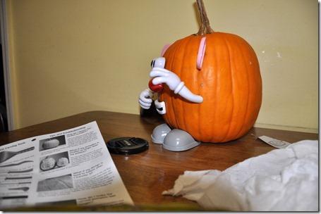 halloween pumpkins 103112 (12)