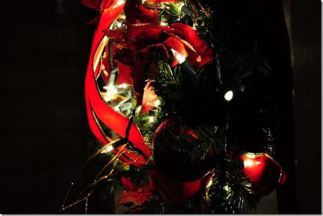 christmas lights dec 18 019