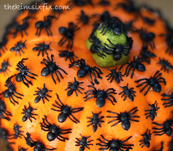 Ant pumpkin