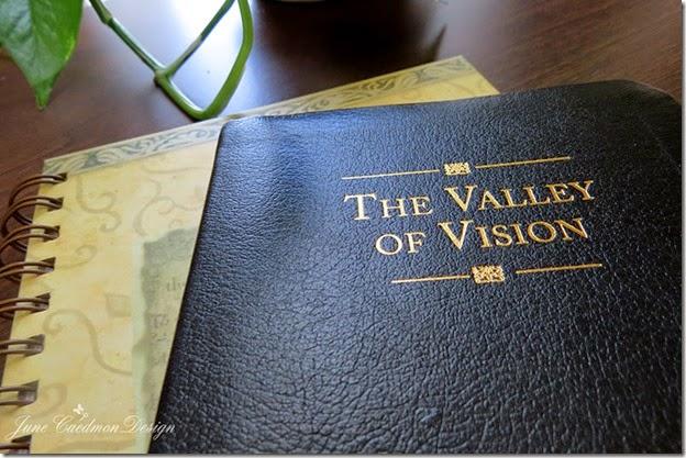 ValleyofVision