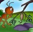 Semut dan Kepompong